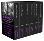 sinful-seconds_box